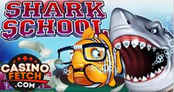 Shark School 3D Video RTG Slots Game Review